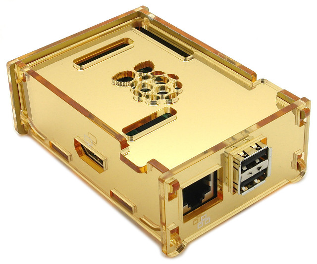 Luxury Pi Case - Mirror Gold