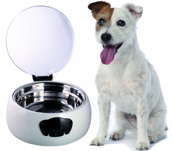 Automatic Feeding Bowl for Dogs